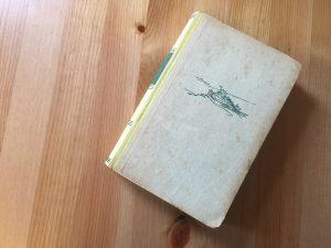 Geliebte Feindin - Buchcover - Walter Basan