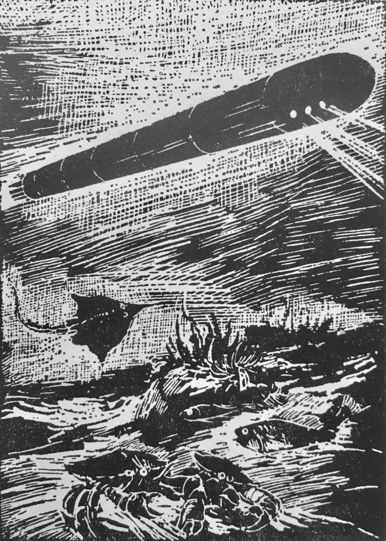 Das Geheimnis zweier Ozeane - G. B. Adamow - Illustration